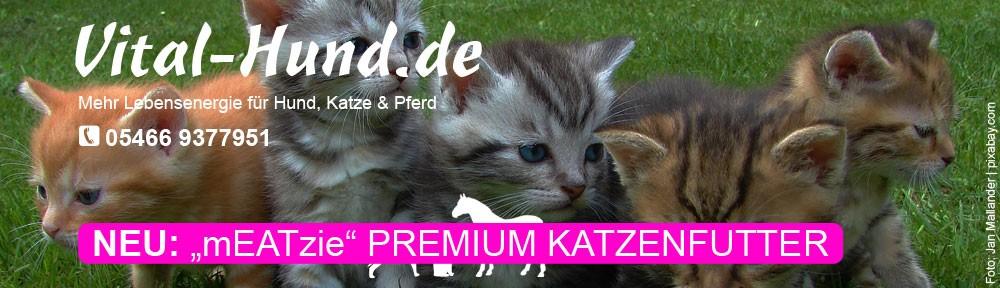 mEATzie - Das Premium Katzenfutter von Reico